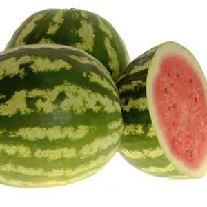Plantation Products 41677 Crimson Sweet Watermelon