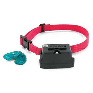 Radio Systems Corp PRF-275-19 Stubborn Dog Fence Collar