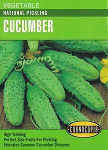 Cornucopia Garden Seeds 155 National Pickling Cucumber Seeds