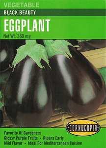 Cornucopia Garden Seeds 221 Black Beauty Eggplant Seeds