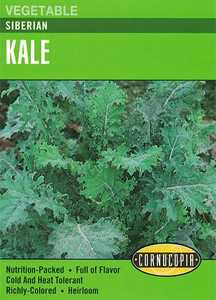 Cornucopia Garden Seeds 265 Siberian Kale Seeds