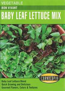 Cornucopia Garden Seeds 281 Bon Vivant Baby Leaf Lettuce Mix Seeds