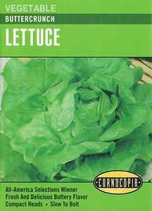 Cornucopia Garden Seeds 222 Buttercrunch Lettuce Seeds