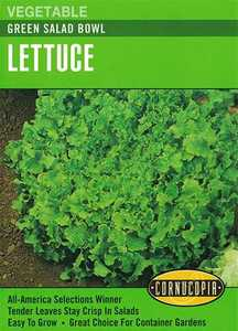 Cornucopia Garden Seeds 160 Green Salad Bowl Lettuce Seeds