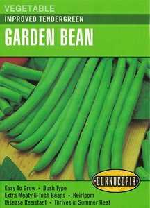 Cornucopia Garden Seeds 190 Improved Tendergreen Garden Bean Seeds