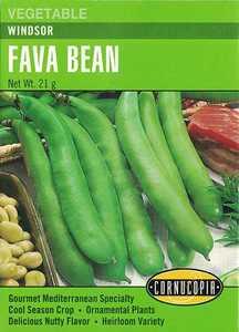 Cornucopia Garden Seeds 264 Windsor Fava Bean Seeds