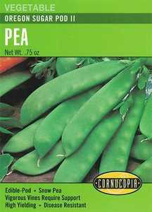 Cornucopia Garden Seeds 194 Oregon Sugar Pod II Pea Seeds