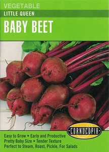 Cornucopia Garden Seeds 293 Little Queen Baby Beet Seeds
