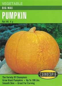 Cornucopia Garden Seeds 168 Big Max Pumpkin Seeds