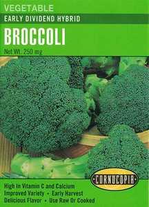 Cornucopia Garden Seeds 242 Early Dividend Hybrid Broccoli Seeds