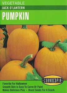 Cornucopia Garden Seeds 169 Jack O'Lantern Pumpkin Seeds