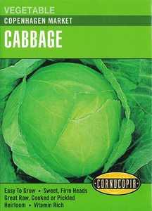Cornucopia Garden Seeds 262 Copenhagen Market Cabbage Seeds