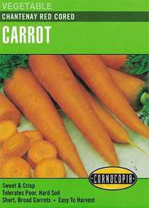 Cornucopia Garden Seeds 150 Chantenay Red Cored Carrot Seeds
