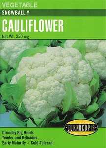 Cornucopia Garden Seeds 277 Snowball Y Cauliflower Seeds