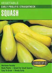 Cornucopia Garden Seeds 178 Early Prolific Straightneck Squash Seeds