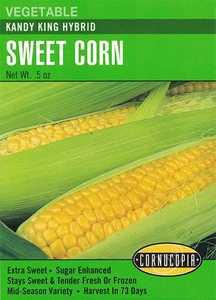 Cornucopia Garden Seeds 198 Kandy King Hybrid Sweet Corn Seeds