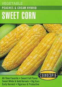 Cornucopia Garden Seeds 292 Peaches And Cream Hybrid Sweet Corn Seeds