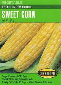 Cornucopia Garden Seeds 224 Precious Gem Hybrid Sweet Corn Seeds
