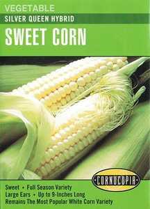 Cornucopia Garden Seeds 200 Silver Queen Hybrid Sweet Corn Seeds