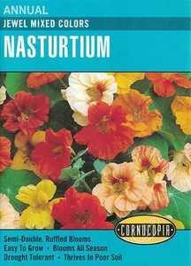 Cornucopia Garden Seeds 126 Jewel Mixed Colors Nasturtium Seeds