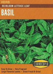 Cornucopia Garden Seeds 239 Heirloom Lettuce Leaf Basil Seeds