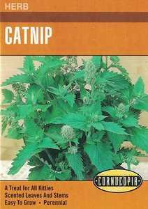 Cornucopia Garden Seeds 217 Catnip Seeds