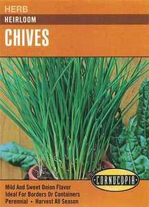Cornucopia Garden Seeds 141 Heirloom Chive Seeds