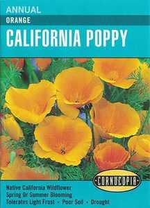 Cornucopia Garden Seeds 115 Orange California Poppy Seeds