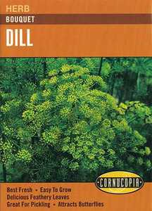 Cornucopia Garden Seeds 259 Bouquet Dill Seeds