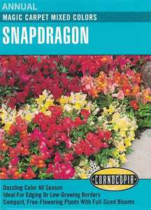 Cornucopia Garden Seeds 130 Magic Carpet Mixed Colors Snapdragon Seeds
