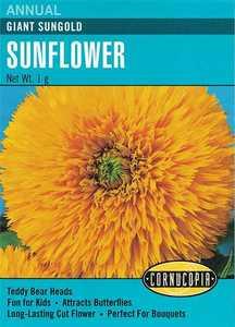 Cornucopia Garden Seeds 270 Giant Sungold Sunflower Seeds