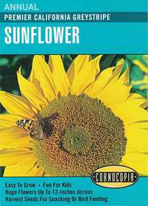 Cornucopia Garden Seeds 134 Premier California Greystripe Sunflower Seeds