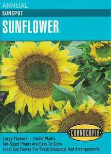 Cornucopia Garden Seeds 214 Sunspot Sunflower Seeds