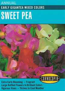 Cornucopia Garden Seeds 135 Early Gigantea Mixed Colors Sweet Pea Seeds