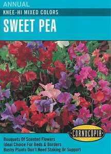Cornucopia Garden Seeds 237 Knee-Hi Mixed Colors Sweet Pea Seeds
