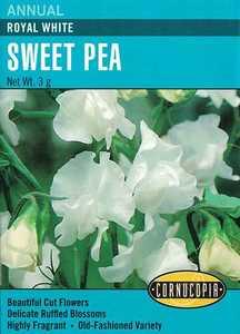 Cornucopia Garden Seeds 271 Royal White Sweet Pea Seeds