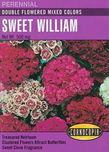 Cornucopia Garden Seeds 107 Double Flowered Mixed Color Sweet William Seeds