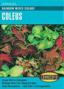 Cornucopia Garden Seeds 231 Rainbow Mixed Colors Coleus Seeds