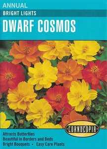 Cornucopia Garden Seeds 268 Bright Lights Dwarf Cosmos Seeds