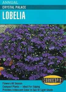 Cornucopia Garden Seeds 119 Crystal Palace Lobelia Seeds