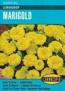 Cornucopia Garden Seeds 212 Lemondrop Marigold Seeds