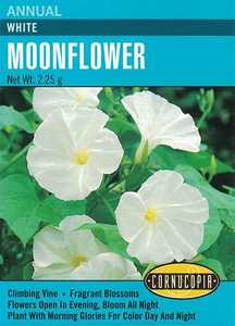 Cornucopia Garden Seeds 122 White Moonflower Seeds