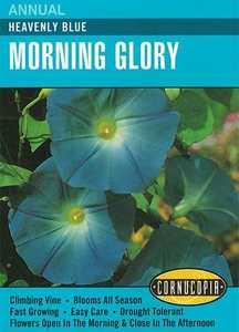 Cornucopia Garden Seeds 123 Heavenly Blue Morning Glory Seeds