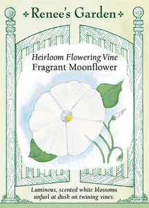 Renee's Garden Seed Co. 5107 Fragrant Moonflower Heirloom Flowering Vine Seeds