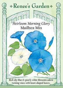 Renee's Garden Seed Co. 5328 Mailbox Mix Morning Glory Seeds
