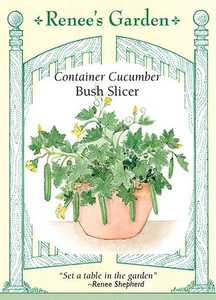 Renee's Garden Seed Co. 5419 Bush Slicer Container Cucumber Seeds