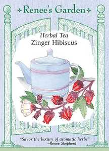 Renee's Garden Seed Co. 5867 Zinger Hibiscus Herbal Tea Seeds