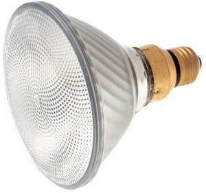 Satco Nuvo Lighting S2248 60 Watt Par38 Halogen Bulb Warm White