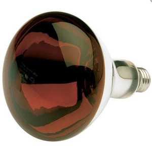 Satco Nuvo Lighting S4998 250 Watt R40 Red Heat Incandescent Bulb