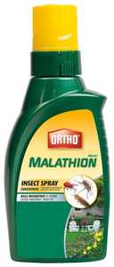 Ortho 165610 Malathion Insect Spray Concentrate 16 oz